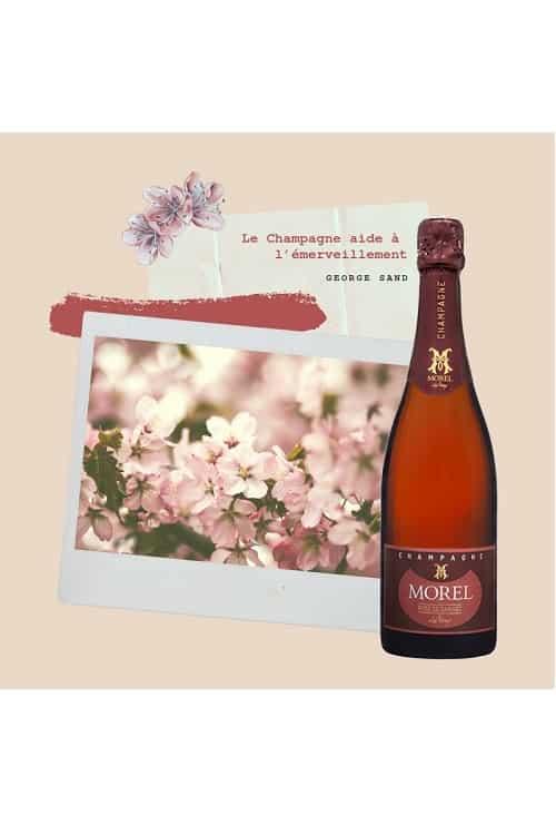 Champagne morel Pur Rosé été